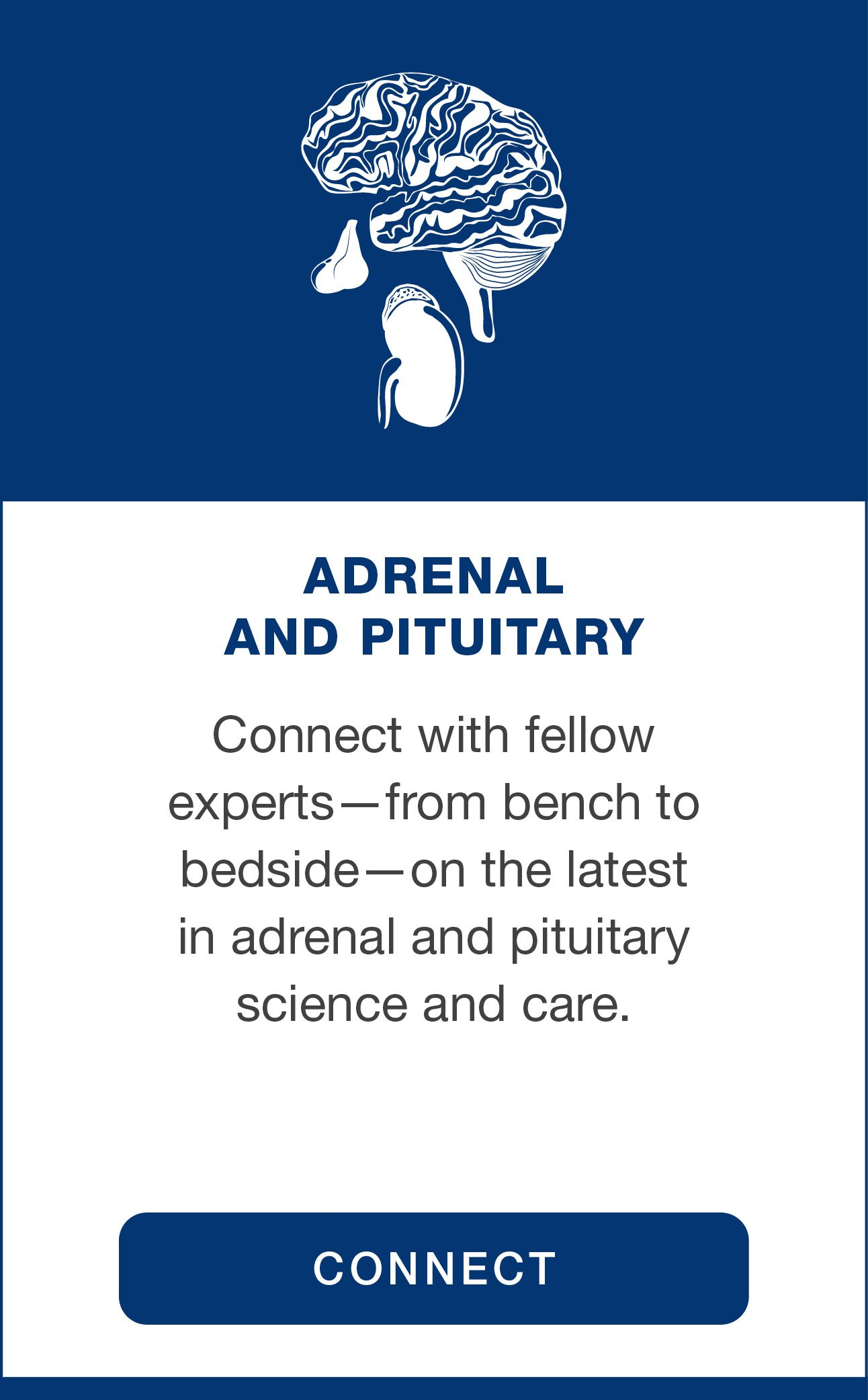 Special Interest Group: Adrenal & Pituitary