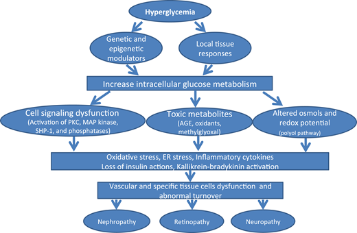 Figure1 - Diabetic Microvascular Disease: An Endocrine Society Scientific Statement