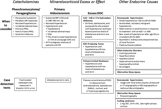 Figure1 - Screening for Endocrine Hypertension: An Endocrine Society Scientific Statement